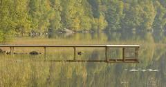 quiet water (bkp77) Tags: autumn herbst september wharf hst steg brygga lerum stamsjn