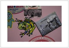 ...I am your fridge frog (Pictures from the Ghost Garden) Tags: japan lens tokyo nikon 28mm voigtlnder setagaya colorskopar d7100