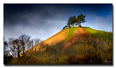Hello-Dorset (jeremy willcocks) Tags: dorset colmerhill uk england colour hill trees sunlight sunny sky clouds jeremywillcocks wwwsouthwestscenesmeuk fujixpro2 xf50140mm landscape