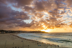 One wave is all it takes (Kevin Longwill) Tags: sydneyonewayisallittakes bondibeach loxia2821 sonya7rii