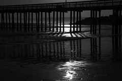 Cayucos Pier I (Joe Josephs: 3,166,284 views - thank you) Tags: beach beaches california californiacoast coastal coastline landscape landscapephotography pacificcoasthighway pacificocean shoreline travel travelphotography joejosephs outdoorphotography people photojournalism ©joejosephs2017 blackandwhitephotography blackandwhite pier water shadows cayucos cayucoscalifornia