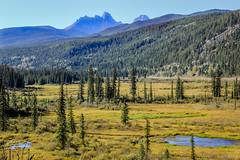 Alberta valley and mountains (Ran Valentine) Tags: alberta mountains plains