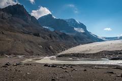 En bas du glacier Athabasca (Seb & Jen) Tags: rocheuses rockies alberta canada glacier athabasca columbia icefield
