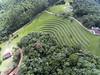 DJI_0312 (Edson Grandisoli. Natureza e mais...) Tags: regiãosudeste mata floresta atlântica cobertura bioma vegetal parque degrau terraço água chuva