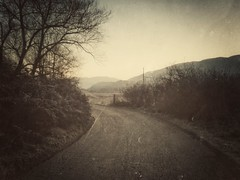 intermission (ΞSSΞ®®Ξ) Tags: ξssξ®®ξ edit lazio italy countryside road tree texture filter snapseed morning landscape huaweip9lite