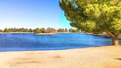 Apollo Park Lake (Joe Lach) Tags: apollopark lake tree sand beach water waterpictorial trees lancaster california joelach