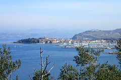Izola depuis la colline (8pl) Tags: mer bourgade izola branches branchages arbustes montagnes bleuté bateaux port clocher hauteur slovénie côte