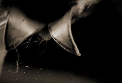 Im Anfang - In The Beginning (Bernd Kretzer) Tags: samenkapsel seeds makro macro schwarzweiss blackwhite minoltamdrokkor50mm114 minolta md wrokkor 28mm 135 retro