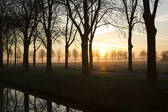 Monday morning (Martijn A) Tags: sunrise zonsopgang nature natuur unpolished onbewerkt raw landscape landschap trees bomen water mist morning ochtend early vroeg canon 550d dslr eos ef35mmf2isusm wwwgevoeligeplatennl flare lens
