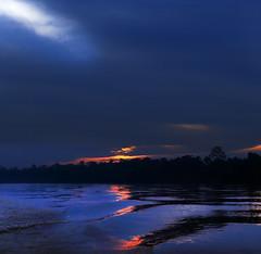 Wild Mercury [explored] (Robyn Hooz (away)) Tags: batang ai borneo malaysia fiume river dawn piombo nuvole clouds water acqua animals wild selvaggio mercury