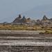 Djibouti Lac Abbé