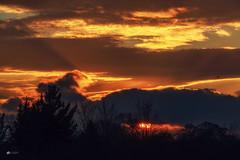 Almost... (Kerriemeister) Tags: crepuscular rays sun sky sunset sundown cloud clouds cloudscape raysofgod raysoflight york nikon trees silhouette bird