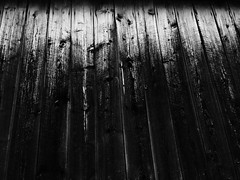 (Maxine Lehnartz) Tags: barn boards barnboard