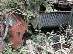 HOVERINGHAM  LEYLAND (Foden fogey) Tags: wheel shaped u six leyland neville hovingham