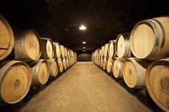 En bourgogne (jk079.twitter) Tags: cave bourgogne chais caveàvin