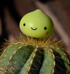 Cactus Hugger (Ceci ♥ Cuteness) Tags: cactus plant cute green japan toy moss bush ceci kawaii figure onsen lime cuteness blush needles spines kun dumpling manju