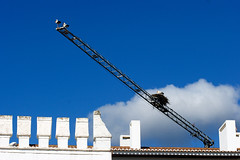 Maybe we need some help from our neighbours (Kari Siren) Tags: bird portugal nest algarve build stork silves