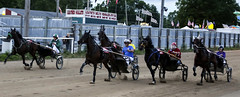 IMG_9301 (milespostema) Tags: county celebrity race big fair rapids harness mecosta