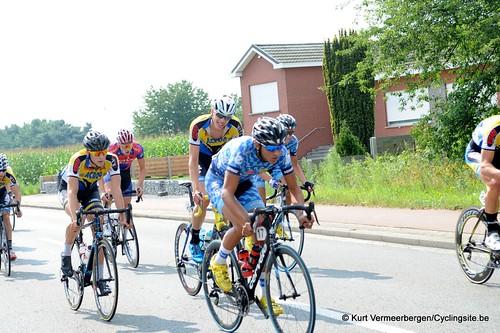 Geel Oosterlo  (51)