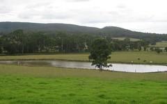 1350 Wollombi Road, Millfield NSW