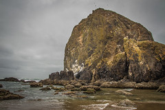 Haystack Rock (Benjamin Coy) Tags: ocean seagulls nature birds oregon rocks waves northwest pacificocean haystack cannonbeach tidepools highway101 pacificcoast seastack pacificcoasthighway