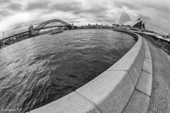 icons (TLP images) Tags: blackwhite sydneyharbour sydneyoperahouse sydneyharbourbridge timlahbrookphotography facebookcomimagestlp imagestlp
