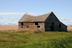 Old building & Rockies (garrymoore) Tags: mountains grass rural decay farm wheat alberta prairie