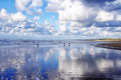 loneliness on the shore of the North Sea,  Scheveningen Netherlands August 2014 (Smo_Q) Tags: beach netherlands scheveningen nederland denhaag paysbas thehague laia haga niederlande オランダ lahaya 荷兰 plaża holandia lahaye paísesbajos 海牙 paesibassi 네덜란드 pentaxk5 헤이그 デン・ハーグ