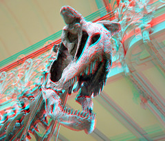 Museum Palaeontology Paris 3D (wim hoppenbrouwers) Tags: paris museum 3d anaglyph stereo palaeontology naturelle redcyan museumpalaeontologyparis