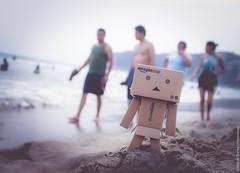 Disfrutando las vacaciones (evanlitos) Tags: beach mexico playa acapulco vacations magico maxico danbo