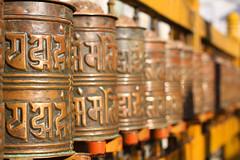India_1079