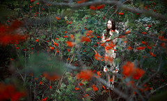 (altingfest) Tags: light sunset wild portrait plants brown color tree film colors girl pine forest 35mm canon hair eyes women warm dress russia wide young lips pines carl 5d hd rowan russian ze distagon carlzeiss 5dmarkii 5dm2 5dmark2 distagont1435 carlzeissdistagont35mmf14