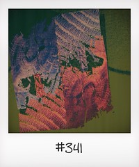 "#DailyPolaroid of 4-9-14 #341 • <a style=""font-size:0.8em;"" href=""http://www.flickr.com/photos/47939785@N05/15375834201/"" target=""_blank"">View on Flickr</a>"