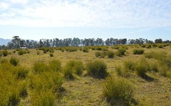 Lot 210 Kelly Close, Branxton NSW