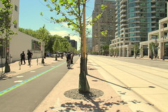 Revitalized Queen's Quay (wyliepoon) Tags: street toronto bike bicycle waterfront path trolley ttc lane transit harbourfront lightrail renovation streetcar lrt downtowntoronto queensquay revitalization