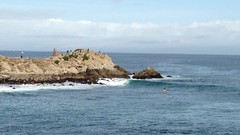 IMG_1221 (mudsharkalex) Tags: california pacificgrove pacificgroveca