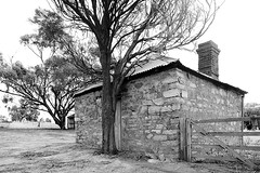 Stone Building (Macr1) Tags: 61403327236 abandoned architecture australia building builtenvironment camera conditions d700 day default disused exteriors farm filters historic itemcondition lens location markmcintosh nikon nikond700 old outdoor overcast pcenikkor24mmf35ded pingelly rural structure wa westernaustralia macr237gmailcom ©markmcintosh westpingelly au