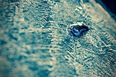 Ice Shards from Bird Feeder (Ginger H Robinson) Tags: ice crystals shards birdfeeder sunrise colorado macro