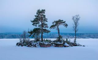 Winter Islet