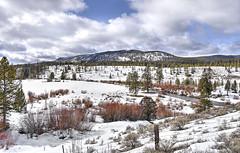 Ranch Down the Road (Musgrove and the Pumi) Tags: mooselakeroad mt fork montana pintlerrangerdistrict ranch dentalfloss snow mountains beaverheaddeerlodgenationalforest middleforkrockcreek