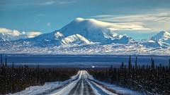 Pileus Cap on Mt Drum (Katy on the Tundra) Tags:
