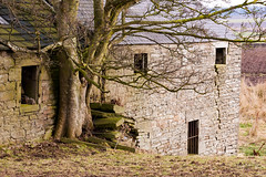 Old Barn near Forfar 06 March 2017-0007.jpg (JamesPDeans.co.uk) Tags: stone path ruraldecay landscape decay gb greatbritain for man who has everything steps roads prints sale oldbuildings abandoned old agriculture unitedkingdom barn digital downloads licence scotland britain geology ruins wwwjamespdeanscouk history angus farm landscapeforwalls europe uk james p deans photography digitaldownloadsforlicence jamespdeansphotography printsforsale forthemanwhohaseverything