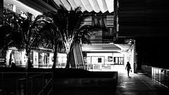 Shopping - Miami, Florida - Black and white street photography (Giuseppe Milo (www.pixael.com)) Tags: grass night alone urban unitedstates city shopping street woman silhouette streetphotography miami usa blackandwhite florida figure us onsale faceless