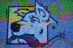 Animal of Berlin CiTTi GrafiTTI 2016 (Marco Braun) Tags: hund dog chien kopf head tête berlin 2016 streetart graffiti farbig coloured colourful bunt deutschlandgermany variopinto