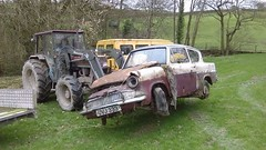 Very Early Anglia 105E - 1959 (Bringing the past to the modern) Tags: ford anglia scrap barn find field 1959 105e classic ca car restoration wreck poor state rusty nature