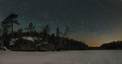 Starry, Starry Night (Tore Thiis Fjeld) Tags: outdoors night winter forest lake frozen trees stars sky starrystarrynight snow nikon d800 samyang 14mm le long exposurestitchnorwayosloøvre movann nordmarka wilderness