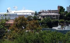 Pacific Jewel, Garden Island, Sydney, NSW. (dunedoo) Tags: gardenisland pacificjewel sydney nsw newsouthwales australia nikonl820