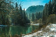 La Franche-Comté en Hiver (France) (Jeremy G. Photography) Tags: winter hiver sony sonya7s a7s alpha7s franchecomté france french nature landscape etang foret forest snow neige blue