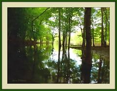 High Water - watercolor (edenseekr) Tags: woods flooding waterway watercoloreffect digitallypainted