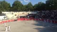 Fte votive  Milhaud - dimanche 27 juillet 2014  IMG_2209 (6franc6) Tags: film 30 languedoc gard vido taureau ficelle milhaud raseteur 6franc6 coccardier